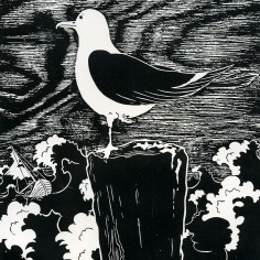 1973 Stormfågel