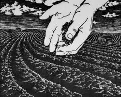 1987 Jordmån